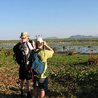 Bird Watching in Cienaga de Zapata