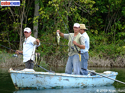 Fishing in Cienaga de Zapata
